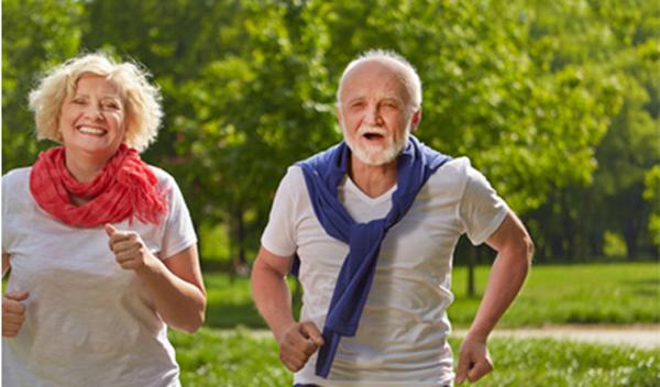 braunhirse-fitness
