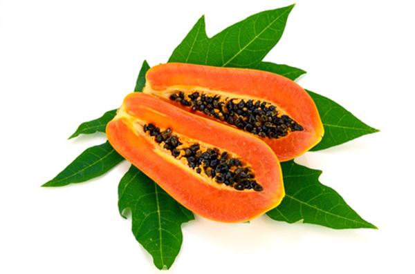 papaya-getrocknet9MJNto2N8ENJT