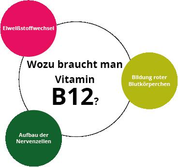 wozu-vitamin-b12